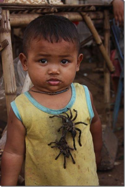 spider-food-cambodia-1