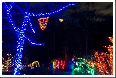 2011Dec31-Brookside-Gardens-84