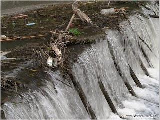 Nepořádek u vody 3.jpg