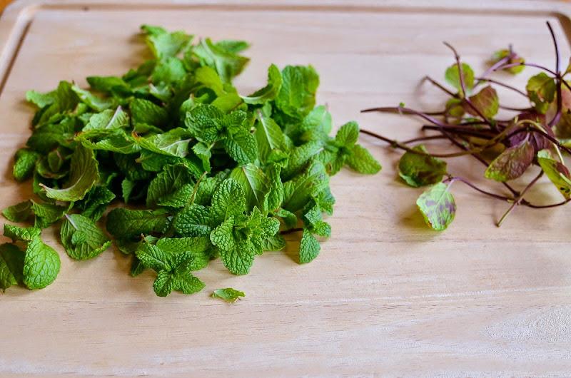 mint cilantro chutney-9485
