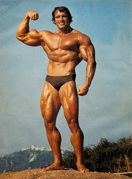 Arnold 02