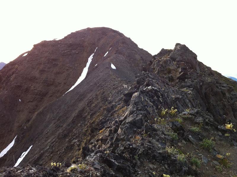 Penguin Ridge Hike - IMG_1212.JPG