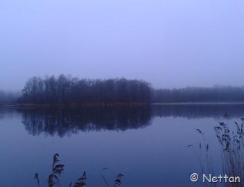 skånsk vinter, dimmig morgon