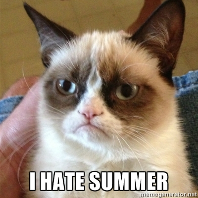 Grumpy I Hate Summer Cat Sad Angry Persian