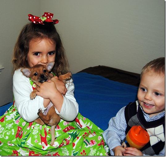 Christmas 2011 070
