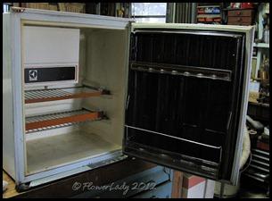 01-20-fridge2