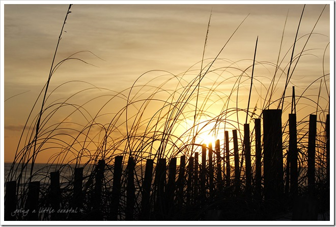 henderson beach fence sunset_edited-1