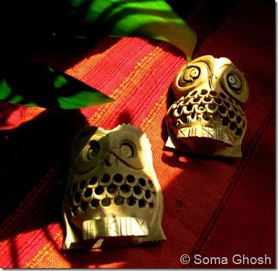 Owl8_Soma Ghosh