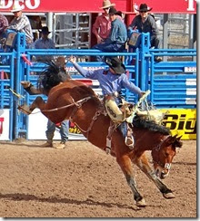 Tucson Rodeo 042 cropped
