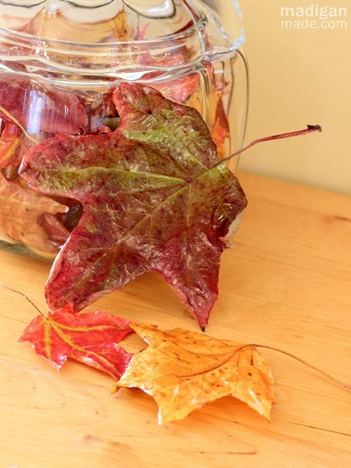 how-to-preserve-fall-leaves-with-decoupage-04