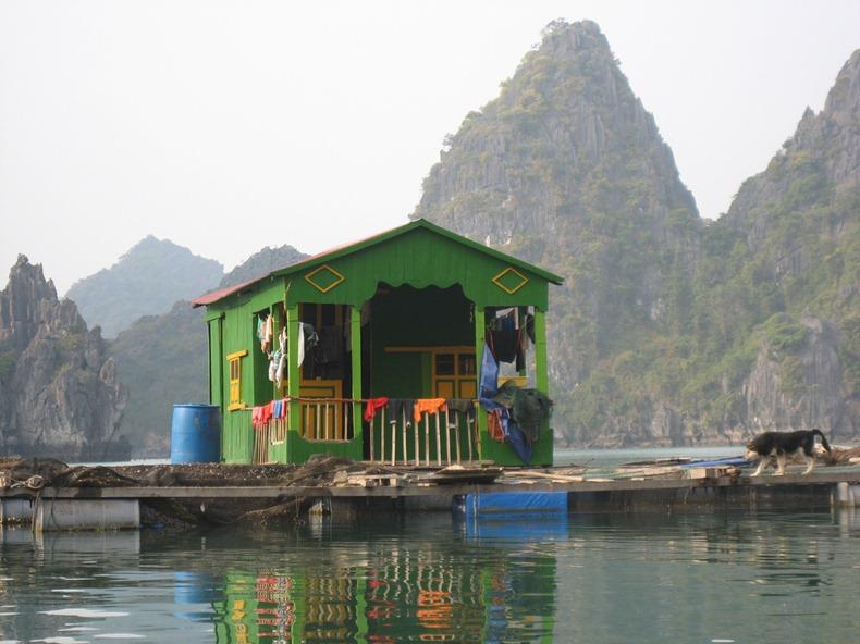 cat-ba-island-1