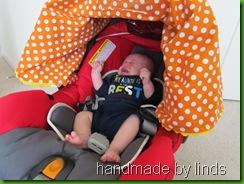 car seat tent 020