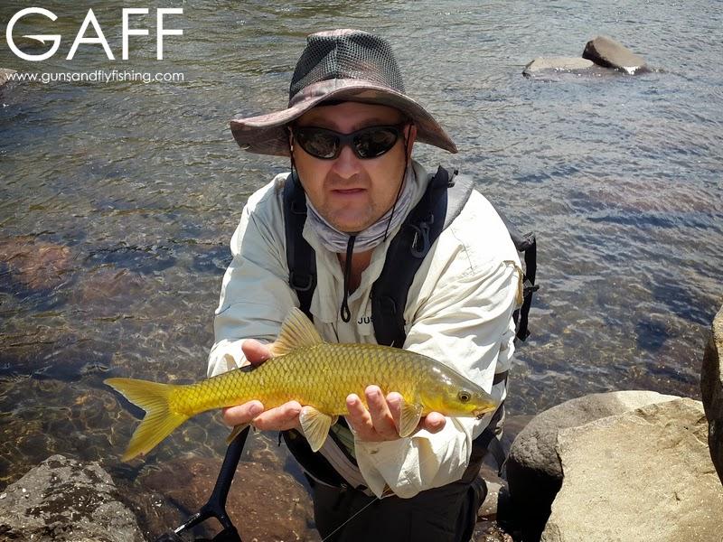 lesotho-yellowfish-flyfishing-trout (5).jpg
