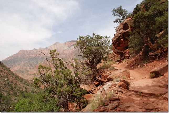 05-05-13 C Watchman Trail 024