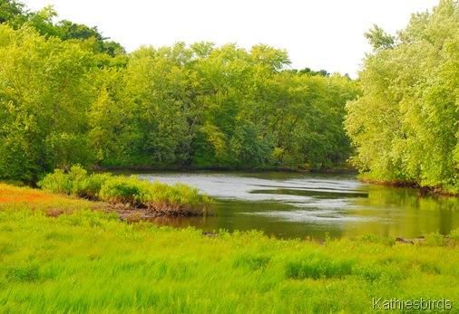 20. river-kab