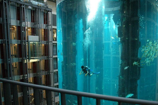 Aquarium-scuba-diving