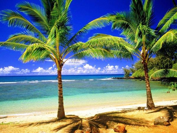 افضل شواطئ العالم