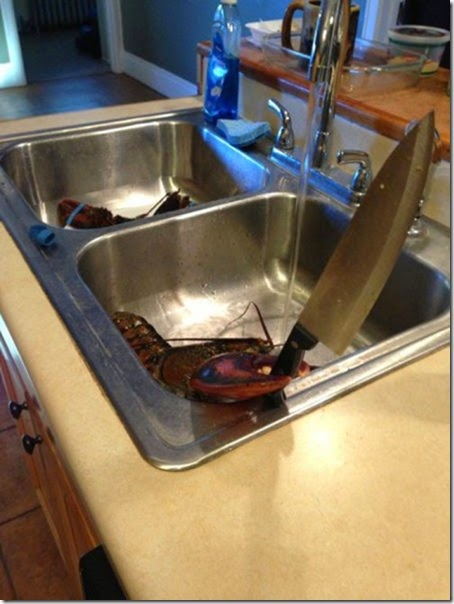 cooking-fails-funny-035
