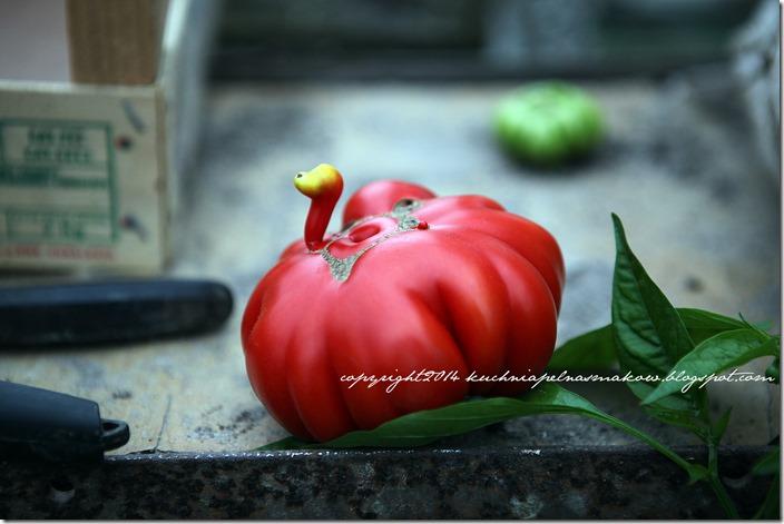 tarta z pomidorami bezglutenowa (13)