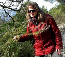 A woodsy walk 09