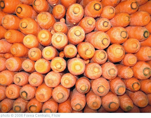 'Carrots' photo (c) 2006, Fovea Centralis - license: http://creativecommons.org/licenses/by-nd/2.0/