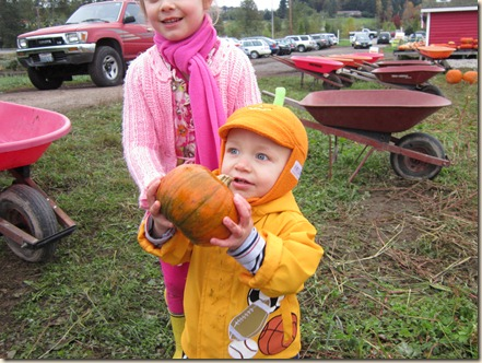 10-15 Pumpkin Patch 15