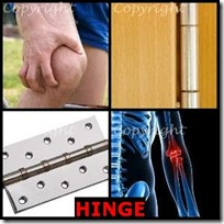 HINGE- 4 Pics 1 Word Answers 3 Letters