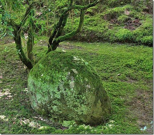 100726_Portland_Japanese_Garden_050
