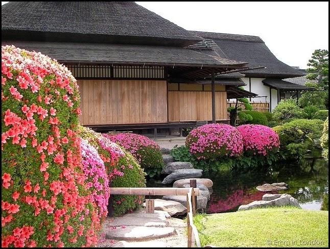 The Korakuen Garden in Okayama