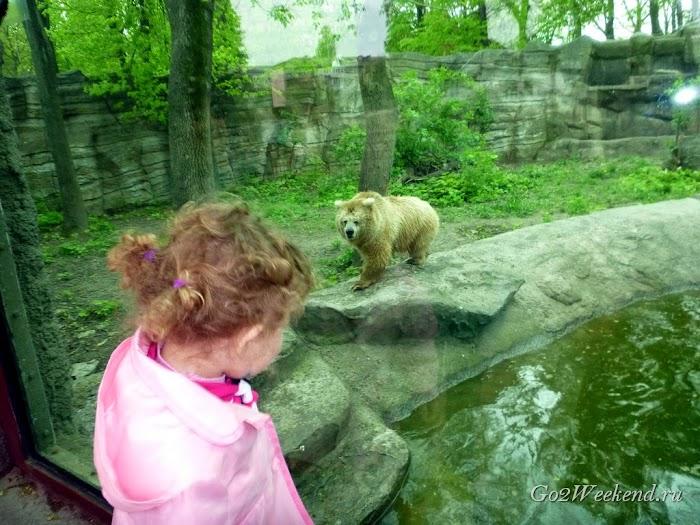 Kiev_Zoo_20.jpg