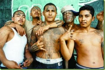 more-fine-illegal-aliens