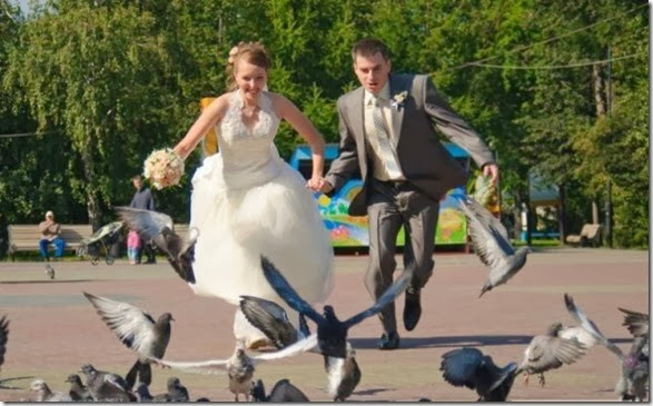 funny-wedding-photos-005