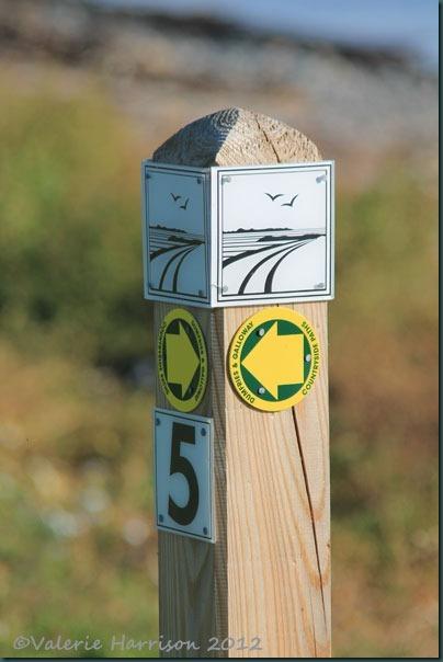 1-signpost