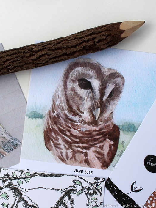 2015 Owl Lovers Calendar via homework (6)