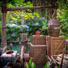 Jungle Cruise Line by Clifford Swall - Landscapes Travel ( water, jungle cruise line, disneyland, jungle cruise )