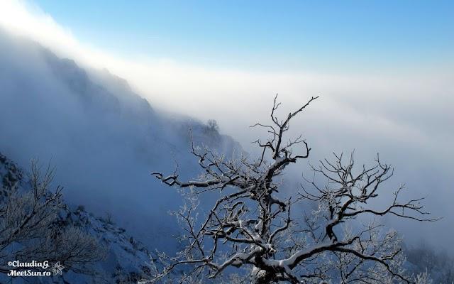 Macin-iarna-44_rw.jpg