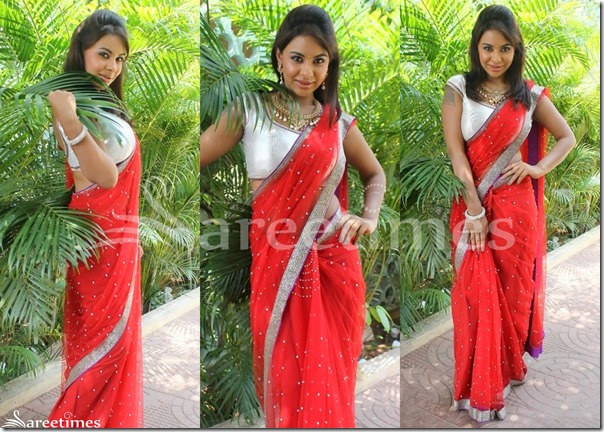 Sri_Red_Red_Embroidery_Saree