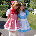 cute japanese girls in maid cosplay at tokyo big sight in Tokyo, Tokyo, Japan