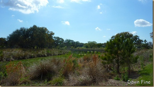 Kapock park Clearwater_003