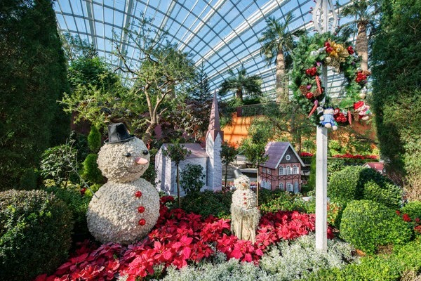 Yuletide in the Flower Dome