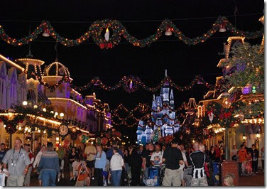 Walt Disney World at Christmas (6)