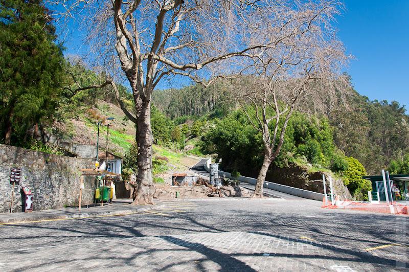 116. Февраль. Мадейра. Канатная дорога. Фуншал. У местных получилось даже выгрызть небольшую площадь в скале.