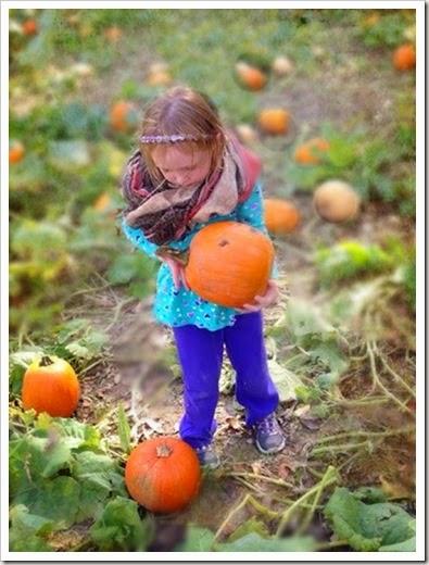 sara pumpkin edit three copy
