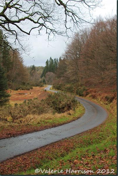 4-winding-road