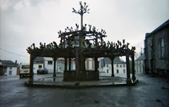 2002.03.17-154.19 tilleul du XVème siècle