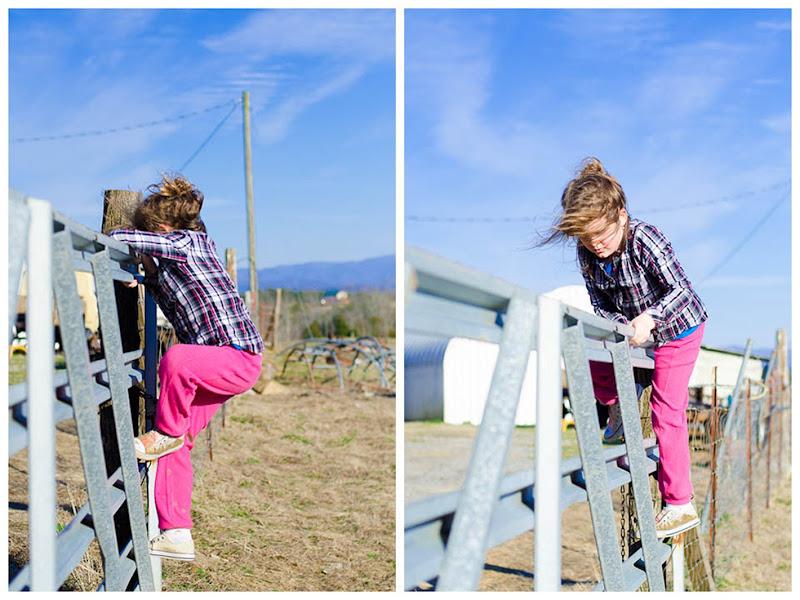 R fence
