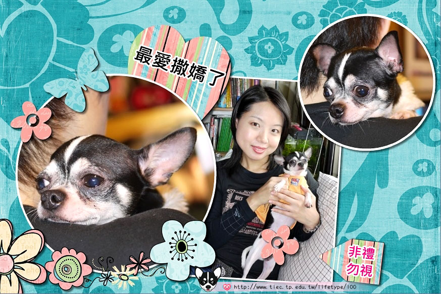 201007minibook-dog04.jpg