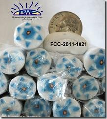 PCC-2011-1021