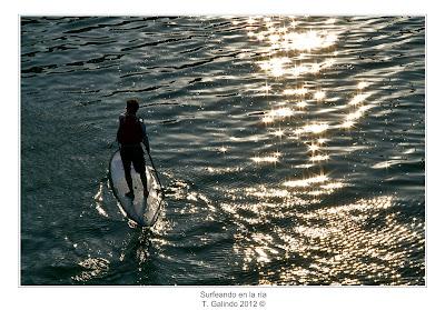 Surfeando en la ría de Bilbao