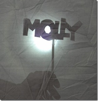 molly shadow